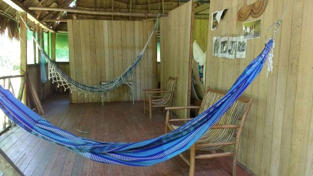 Lodge - Shintuya - Jungle manu - Amazonie - Pérou