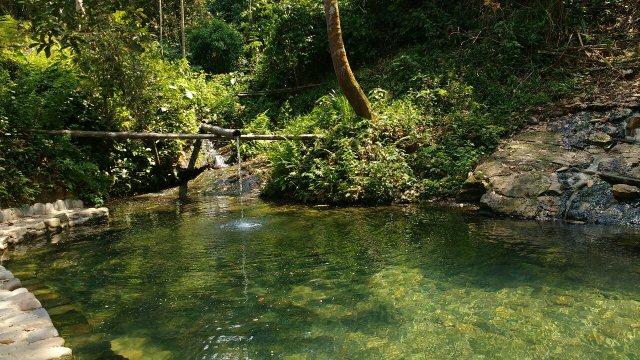 Piscine naturelle - Lodge - Shintuya - Jungle manu - Amazonie - Pérou