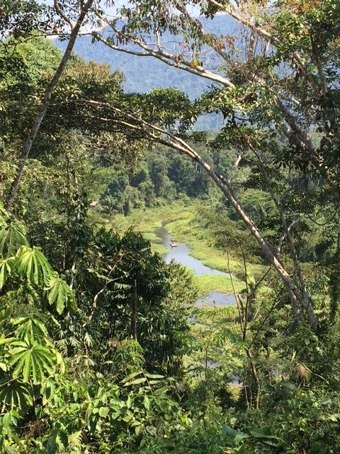 Rio - Salvacion - Jungle manu - Amazonie - Pérou