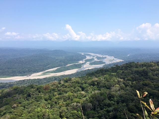Mirador - Shintuya - Jungle manu - Amazonie - Pérou