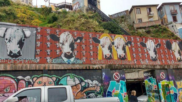 Valparaiso - street art graffiti - el Crudo - Chile