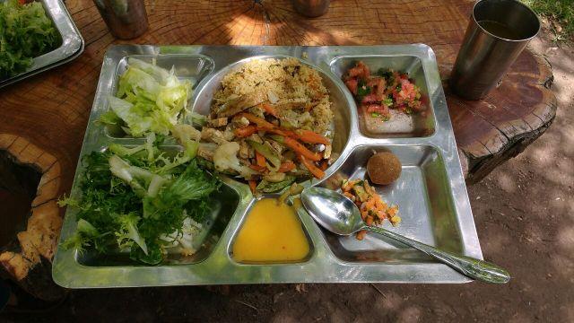 Dej végétarien - Volontariat - Eka Chakra - Hare Krishna - Catemu - Chili