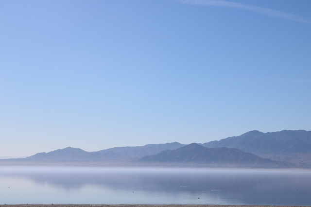 Sulton sea - Californie - USA
