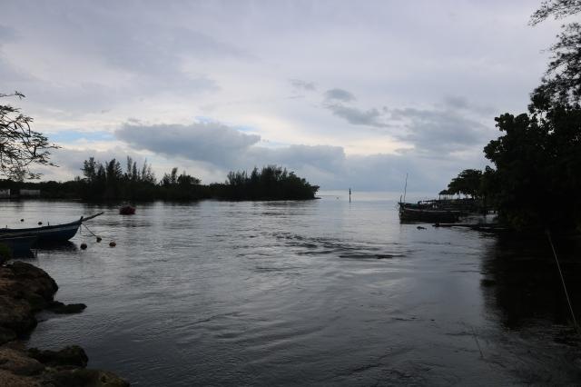 Playa Larga - Cuba - baie des cochons