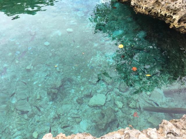 Caleta buena - Playa Giron - Cuba